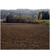 Myydään: Tontti, Härkätie 270, 31380, Letku.
