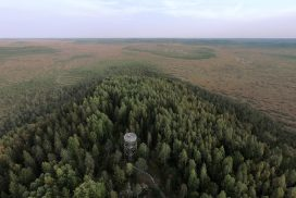 Kiljamon lintutorni ja nuotiopaikka, Torronsuon kansallispuisto