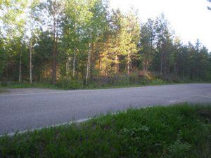 Myydään: Tontti, Liesjärventie 1010, Tammela.